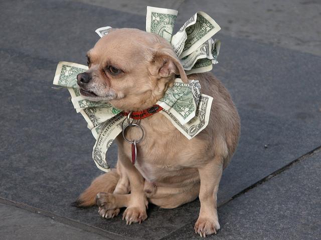 お金とうまく付き合うにはまず1ヶ月に必要なお金を認知する事