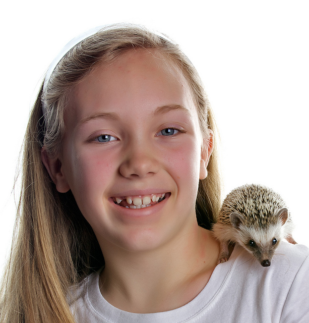 子供にハリネズミをおすすめしたい5つの理由